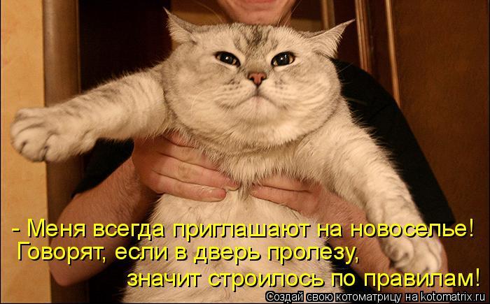 Котоматрица: - Меня всегда приглашают на новоселье! Говорят, если в дверь пролезу,  значит строилось по правилам!