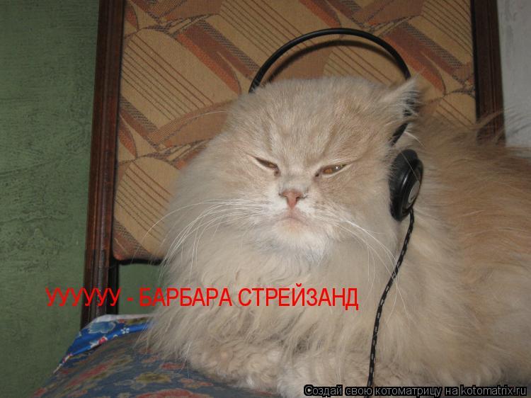 Котоматрица: УУУУУУ - БАРБАРА СТРЕЙЗАНД