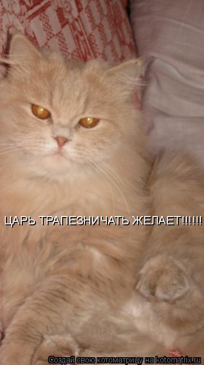 Котоматрица: ЦАРЬ ТРАПЕЗНИЧАТЬ ЖЕЛАЕТ!!!!!!!!!!!