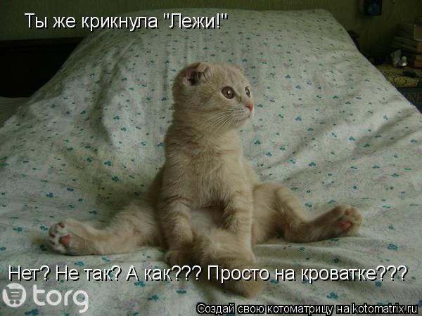 """Котоматрица: Ты же крикнула """"Лежи!"""" Нет? Не так? А как??? Просто на кроватке???"""