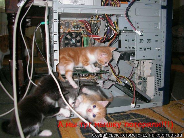 Котоматрица: А мы тут мышку потеряли!!!)