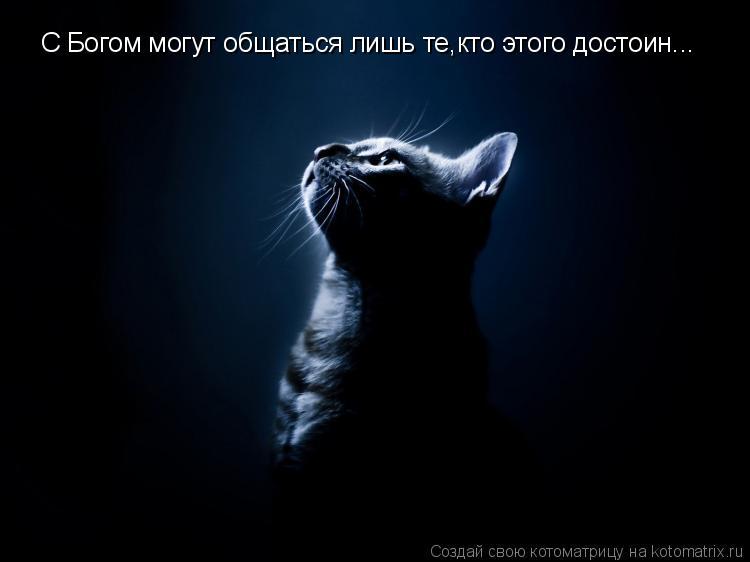 Котоматрица: Я вижу свет в конце тоннеля! Я вижу свет в конце тоннеля!  Я вижу свет в конце тоннеля!  Я вижу свет в конце тоннеля!  С Богом могут общаться лиш