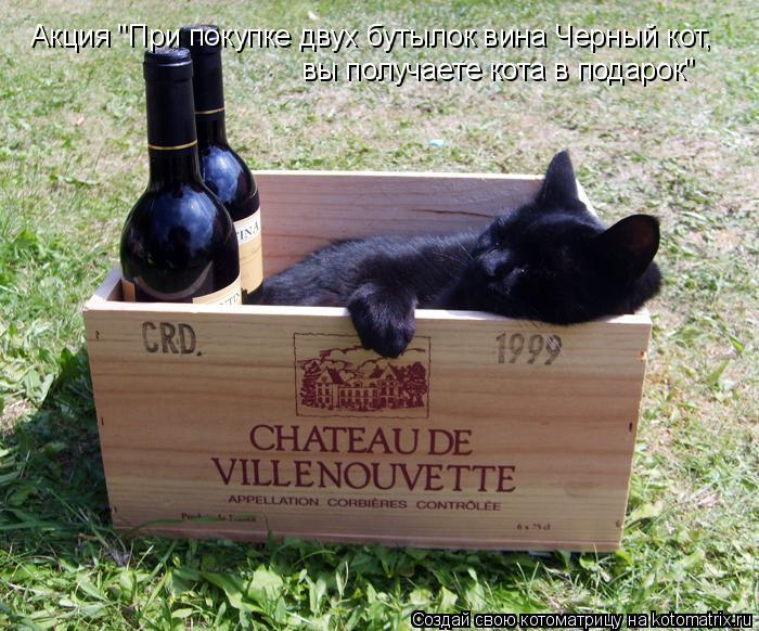"""Котоматрица: Акция """"При покупке двух бутылок вина Черный кот,  вы получаете кота в подарок"""""""