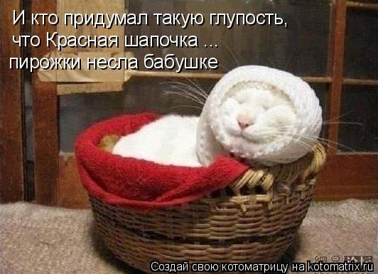 Котоматрица: И кто придумал такую глупость, что Красная шапочка ... пирожки несла бабушке