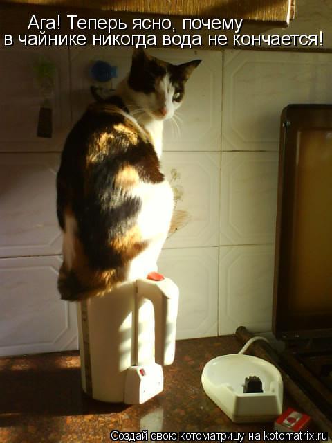 Котоматрица: Ага! Теперь ясно, почему  в чайнике никогда вода не кончается!