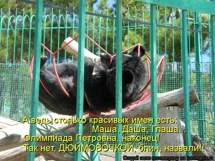 Котоматрица: - А ведь столько красивых имен есть:    Маша, Даша, Глаша...    Олимпиада Петровна, наконец!  Так нет, ДЮЙМОВОЧКОЙ, блин, назвали!!