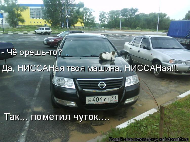 Котоматрица: - Чё орешь-то?  Да, НИССАНая твоя машина, НИССАНая!!! Так... пометил чуток....