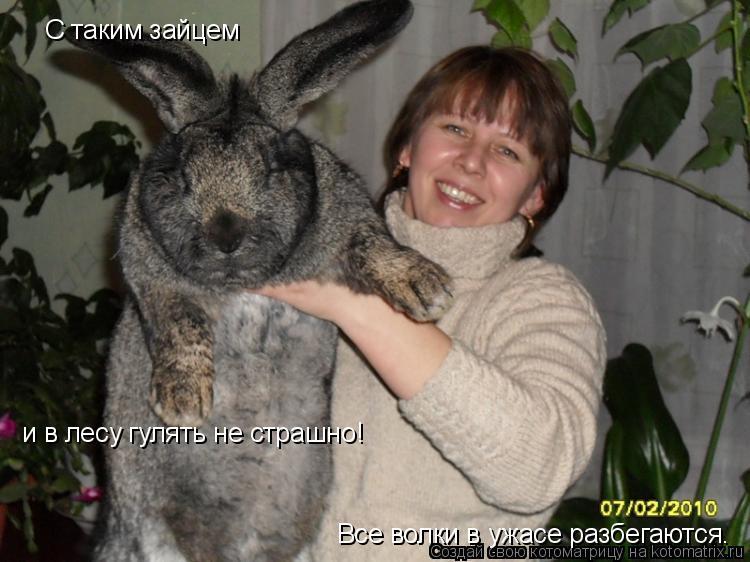 Котоматрица - С таким зайцем и в лесу гулять не страшно! Все волки в ужасе разбегают