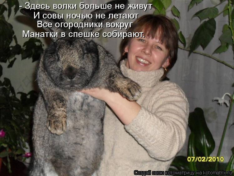 Котоматрица: - Здесь волки больше не живут И совы ночью не летают Все огородники вокруг Манатки в спешке собирают.