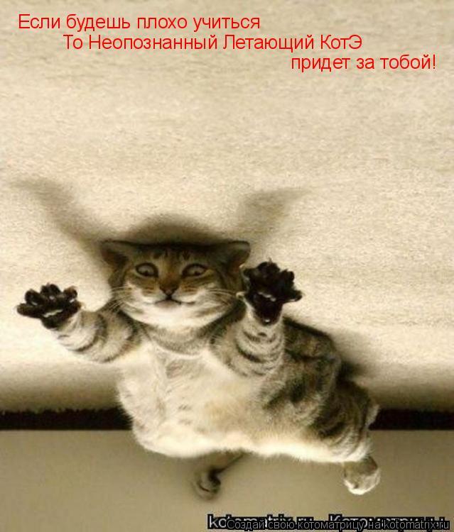 Котоматрица: Если будешь плохо учиться То Неопознанный Летающий КотЭ придет за тобой!