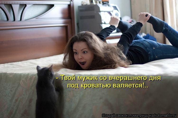 Котоматрица: - Твой мужик со вчерашнего дня  под кроватью валяется!..