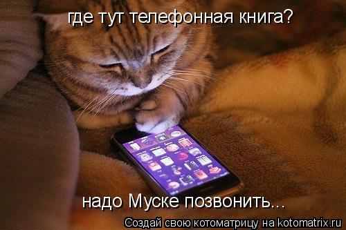 Котоматрица: где тут телефонная книга? надо Муске позвонить...