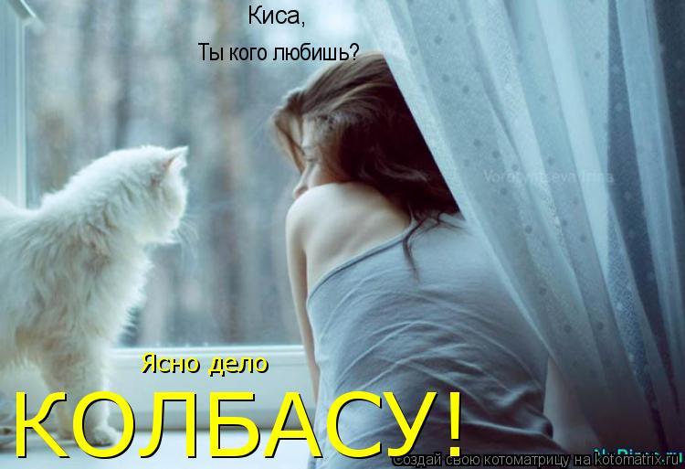 Котоматрица: Киса,  Ты кого любишь? Ясно дело КОЛБАСУ!