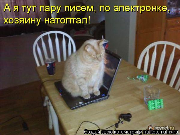 Котоматрица - А я тут пару писем, по электронке,  хозяину натоптал!