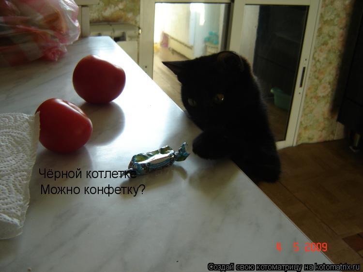 Котоматрица: Чёрной котлетке Чёрной котлетке Можно конфетку?