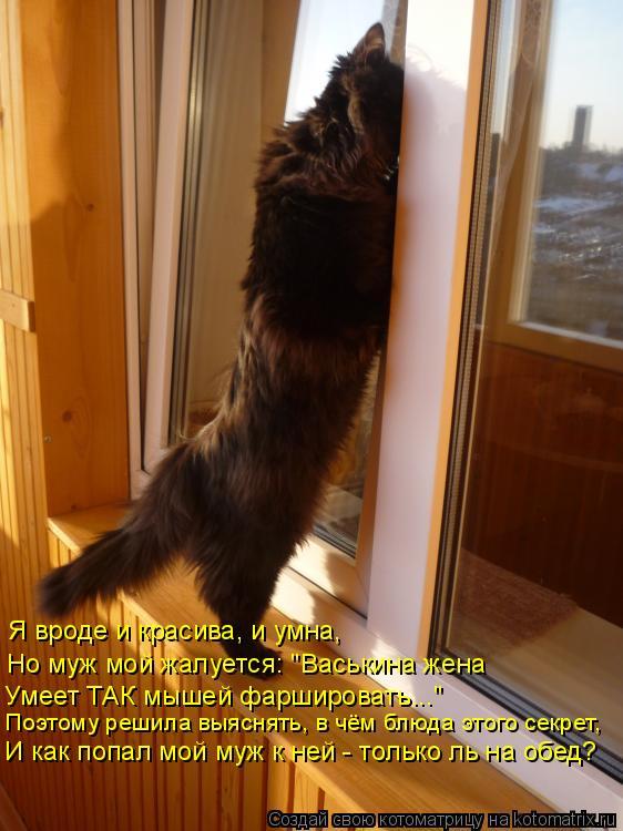 """Котоматрица: Я вроде и красива, и умна, Но муж мой жалуется: """"Васькина жена Умеет ТАК мышей фаршировать..."""" Поэтому решила выяснять, в чём блюда этого секре"""