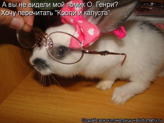 """Котоматрица: А вы не видели мой томик О. Генри?  Хочу перечитать """"Кроли и капуста""""."""