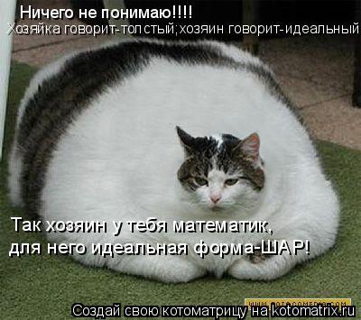 Котоматрица: Ничего не понимаю!!!! Хозяйка говорит-толстый;хозяин говорит-идеальный... Так хозяин у тебя математик, для него идеальная форма-ШАР!