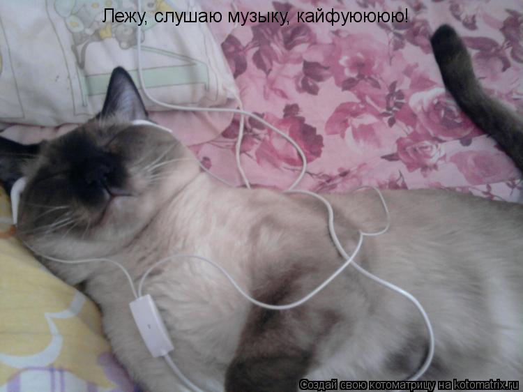 Котоматрица: Лежу, слушаю музыку, кайфуюююю!