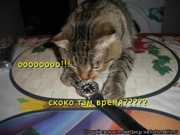 Котоматрица: скоко там время????? оооооооо!!!
