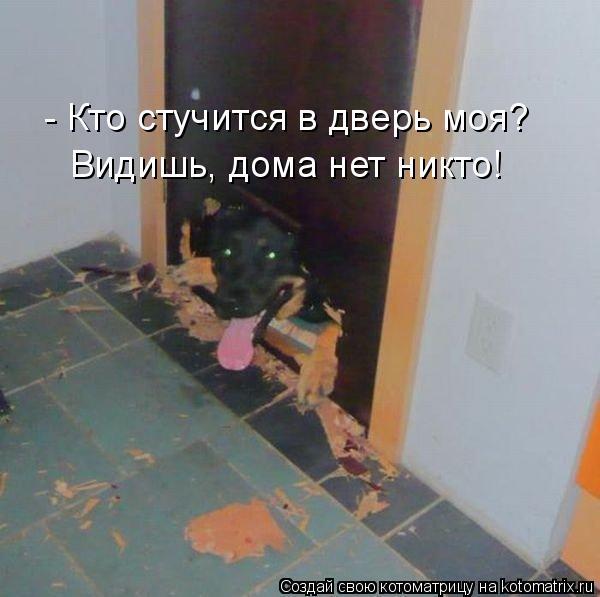 Котоматрица: - Кто стучится в дверь моя? Видишь, дома нет никто!