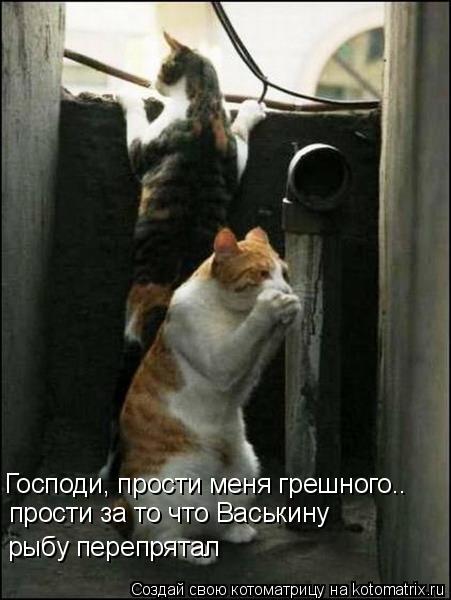 Котоматрица: Господи, прости меня грешного.. прости за то что Васькину  рыбу перепрятал