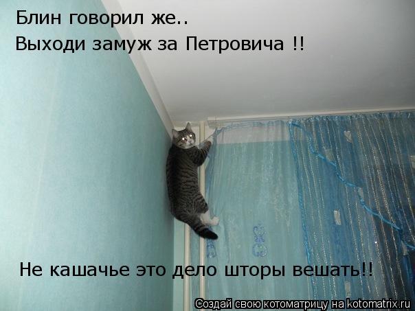 Котоматрица: Блин говорил же.. Выходи замуж за Петровича !! Не кашачье это дело шторы вешать!!