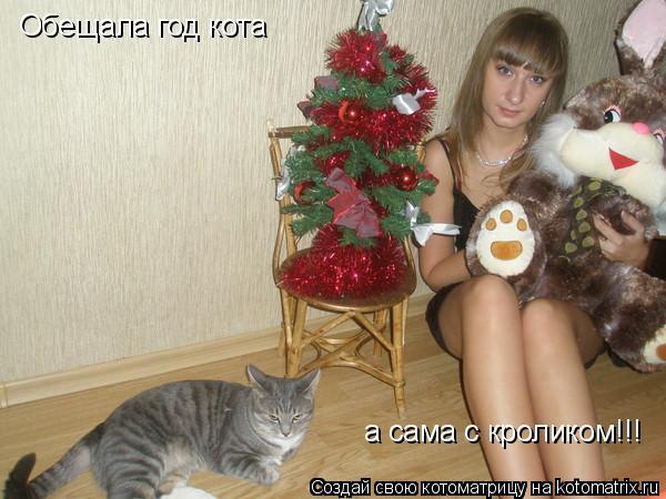 Котоматрица: Обещала год кота а сама с кроликом!!!