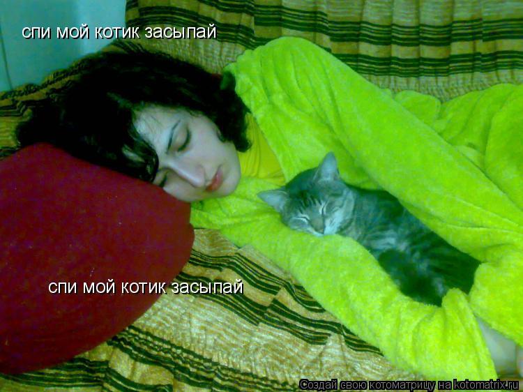 Котоматрица: спи мой котик засыпай спи мой котик засыпай