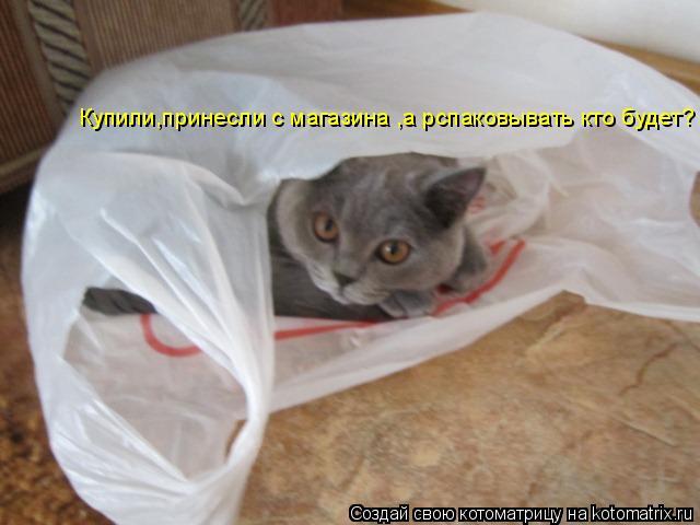 Котоматрица: Купили,принесли с магазина ,а рспаковывать кто будет?