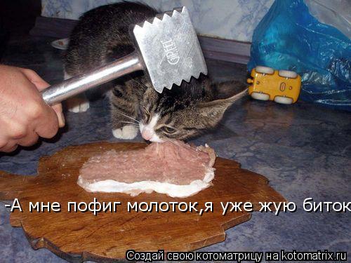 Котоматрица: -А мне пофиг молоток,я уже жую биток!