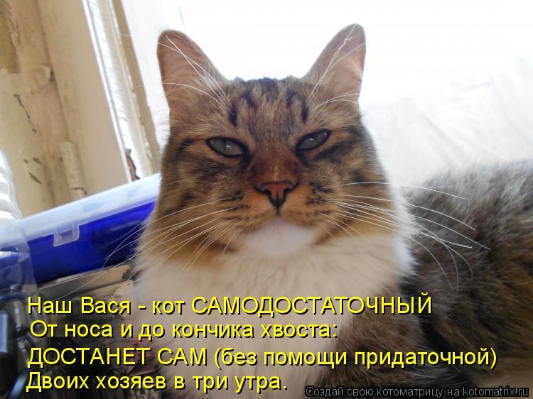 Котоматрица: Наш Вася - кот САМОДОСТАТОЧНЫЙ От носа и до кончика хвоста: ДОСТАНЕТ САМ (без помощи придаточной) Двоих хозяев в три утра.