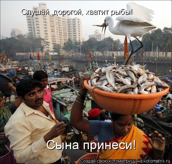 Котоматрица - Слушай ,дорогой, хватит рыбы! Сына принеси!