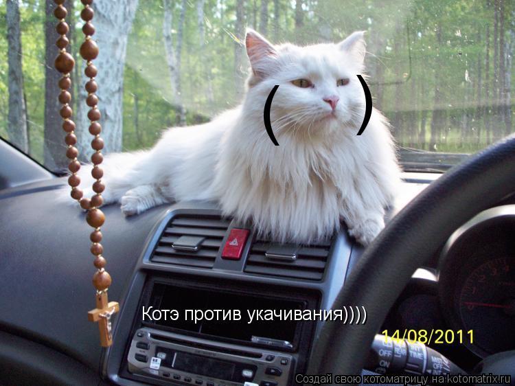 Котоматрица: Котэ против укачивания)))) ) (