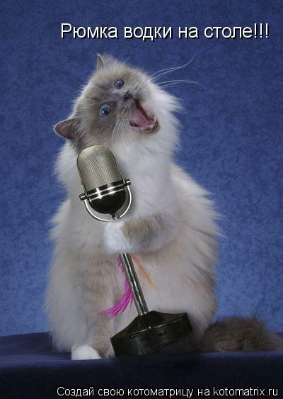 Котоматрица: Рюмка водки на столе!!!