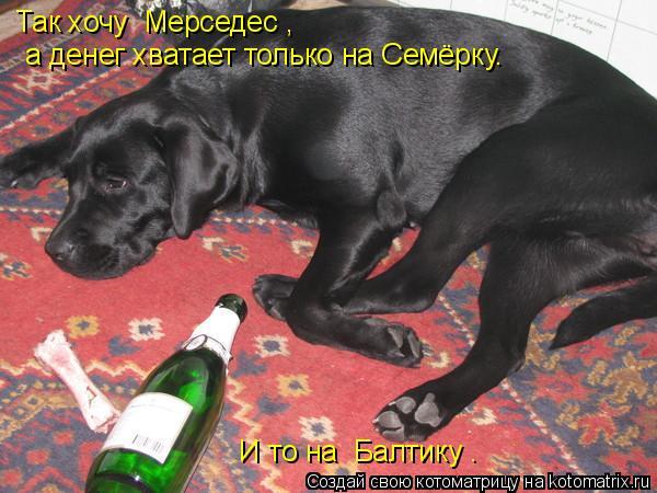 Котоматрица: Так хочу «Мерседес»,  а денег хватает только на Семёрку…   И то на «Балтику».
