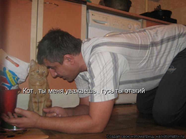 Котоматрица: Кот , ты меня уважаешь , гусь ты этакий