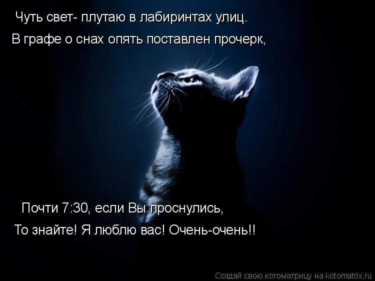 Котоматрица: Чуть свет- плутаю в лабиринтах улиц. В графе о снах опять поставлен прочерк, Почти 7:30, если Вы проснулись, То знайте! Я люблю вас! Очень-очень!!