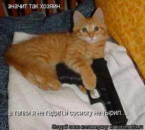 Котоматрица: в тапки я не гадил,и сосиску не тырил... значит так хозяин...