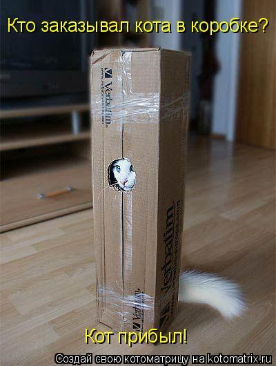 Котоматрица: Кто заказывал кота в коробке? Кот прибыл!