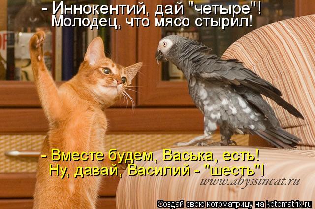 """Котоматрица: - Иннокентий, дай """"четыре""""! Молодец, что мясо стырил! - Вместе будем, Васька, есть! Ну, давай, Василий - """"шесть""""!"""