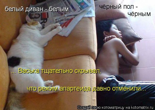 Котоматрица: белый диван - белым чёрный пол - чёрным ... Васька тщательно скрывал, что режим апартеида давно отменили...