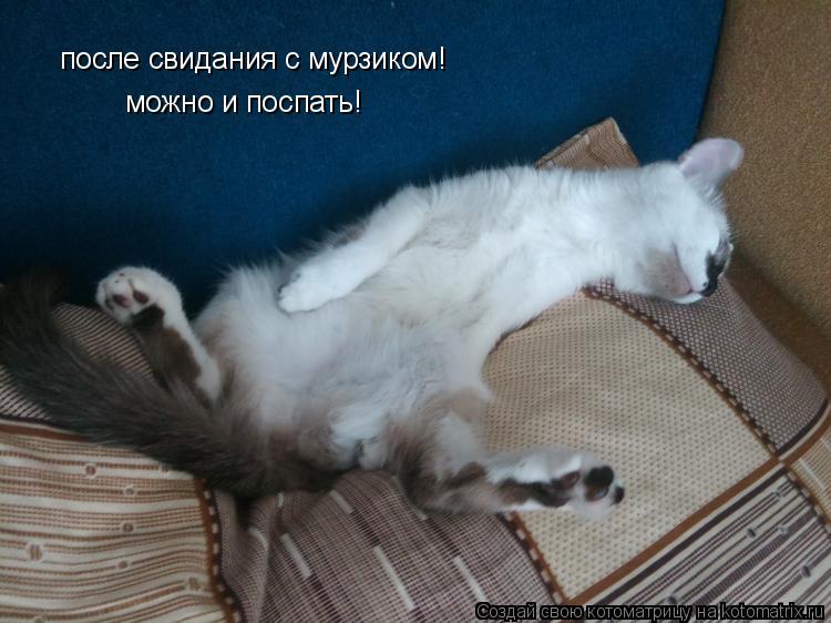 Котоматрица: после свидания с мурзиком! можно и поспать!