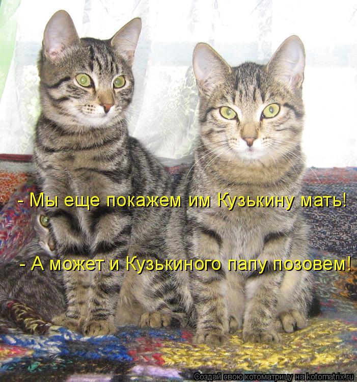 Котоматрица: - Мы еще покажем им Кузькину мать! - А может и Кузькиного папу позовем!