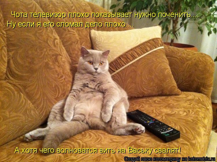 Котоматрица: Чота телевизор плохо показывает нужно поченить.... Ну если я его сломал дело плохо.... А хотя чего волноватся вить на Ваську свалят!