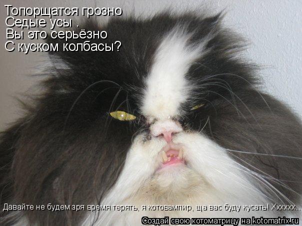Котоматрица: Топорщатся грозно Седые усы – Вы это серьёзно С куском колбасы? Давайте не будем зря время терять, я котовампир, ща вас буду кусать! Хххххх...