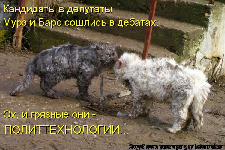 Котоматриця!)))) - Страница 8 978720