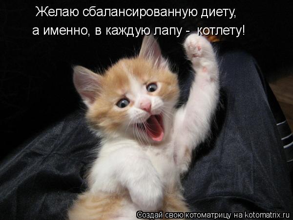 Котоматриця!)))) - Страница 8 978826