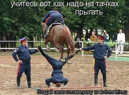 Котоматрица: учитесь вот как надо на тачках  прыгать