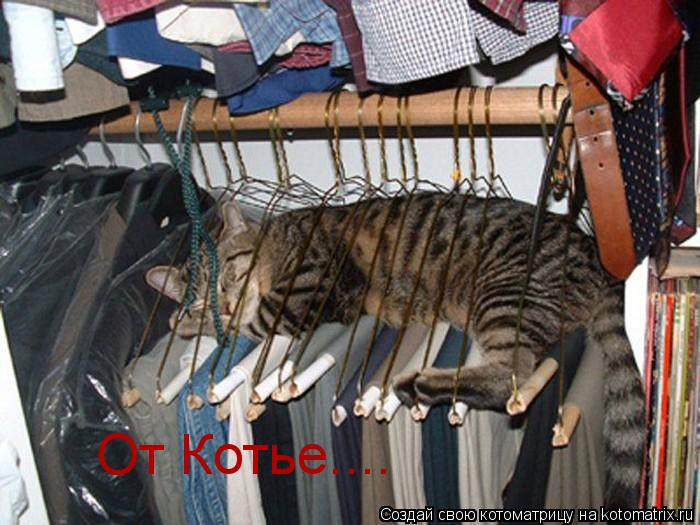 Котоматрица: От Котье....